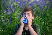 picture of allergy  - A teen boy with allergies in flowering herbs - JPG
