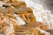 picture of mammoth  - Colorful Mammoth Hot Spring Terraces in Yellowstone National Park - JPG