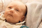 picture of baby diapers  - Closeup little newborn baby girl three weeks lying in diaper with open eyes - JPG