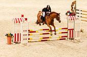 stock photo of jumping  - Equitation - JPG