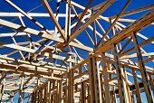 Timber House Framing