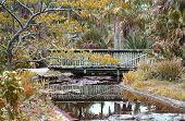 Foot Bridge Over Water