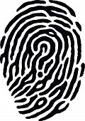 stock photo of dna fingerprinting  - A finger print has a question mark in the middle of it - JPG