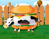 Cow hamburger