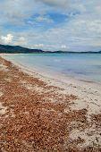 Playa de la Cinta, Sardinia