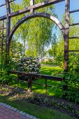 A Tall Wooden Arch With Rose Bushes Against The Background Of A Flowering Bush poster