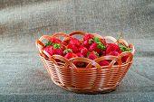 Fresh Strawberries. Ripe Juicy Strawberries In Wicker Basket. Natural Source Vitamins. Large Juicy S poster
