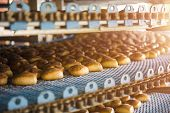 Cakes On Automatic Conveyor Belt Or Line, Process Of Baking In Confectionery Culinary Factory Or Pla poster