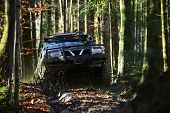 Offroad Race On Fall Nature Background. Rallying, Competition And Four Wheel Drive Concept. Motor Ra poster