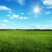 Blue sky with sun and summer field.