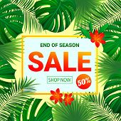 Seasonal Promotion Poster. Summer Sale Design. Tropic Background With Exotic Tropical Flowers, Leave poster