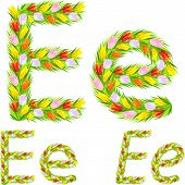 Vector Font Type Letter E Made From Flower Tulip