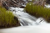 Waterfall cascading over wood debris of beaver dam