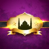 beautiful ramadan kareem vector illustration label