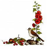 Nature Half Border: Bird, Flowers, Berries