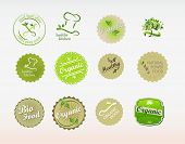 Labels set for organic and natural eco food