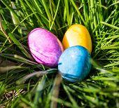 Caça ao ovo de Páscoa