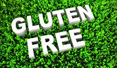 Gluten Free Food Concept on Natural Grass in 3D