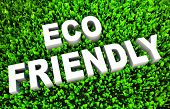 Conceito de Eco-Friendly na grama verde e texto