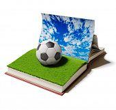 Soccer ball or football ball in open book. 3D concept.