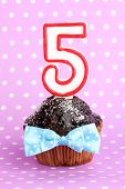 Birthday cupcake with chocolate frosting on lilac background