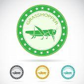 Set of vector grasshopper label