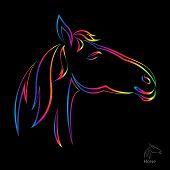 Vector de la imagen del caballo