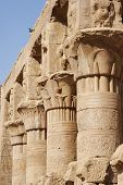 picture of ptolemaic  - Ancient columns in form of lotus flower at Edfu temple - JPG