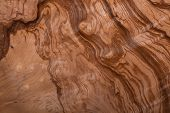 closeup image of natural wood texture