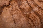 closeup image of natural wood texture