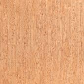 Walnut Wooden Texture, Tree Background