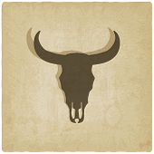 picture of cow skeleton  - bull skull old background  - JPG