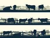 stock photo of oxen  - Horizontal vector banner silhouettes of grazing farm animals with fence  - JPG