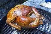 Whole Turkey Roasting on Grill