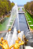 pic of samson  - The View Of Samson Fountain And Gulf In Peterhof - JPG