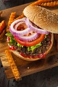 stock photo of veggie burger  - Homemade Healthy Vegetarian Quinoa Burger with Lettuce and Tomato