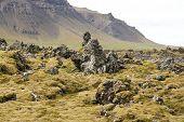Beautiful Icelandic Nature