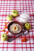 Bowl of oatmeal, yogurt and apples on checkered fabric background