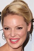 LOS ANGELES - OCT 24:  Katherine Heigl at the Big Brothers Big Sisters Big Bash at the Beverly Hilton Hotel on October 24, 2014 in Beverly Hills, CA