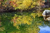 Yellow Red Leaves Fall Colors Green Water Reflection Abstract Wenatchee River Valley Near Stevens Pa