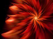 Decorative fractal flower illustration