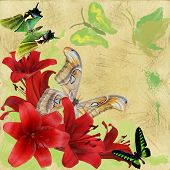 Butterfly And  Lily On Background Grunge