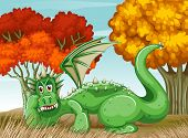 illustration of a dragon in the field