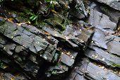 Rocks (on trail) Near Appalachian Waterfall-1