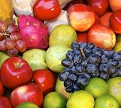 The photograph with variety of fruits