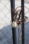 image of chain link fence  - Chain link fence and metal door with lock - JPG