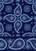 Winter Paisley seamless  pattern and border