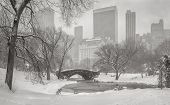 View Of The Pond, Gapstow Bridge And Manhattan Skyscrapers During A Snowstorm.