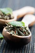 Fresh green tea leaves on wooden spoon