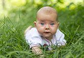 A Little Baby